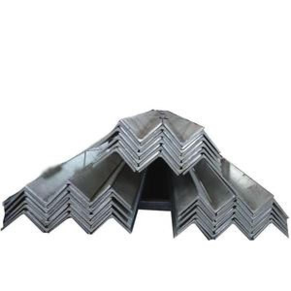 Tianjin Manufacturer Supply Q235 Q345 Hot Rolled MS Perforated Mild Steel Angle Iron #1 image